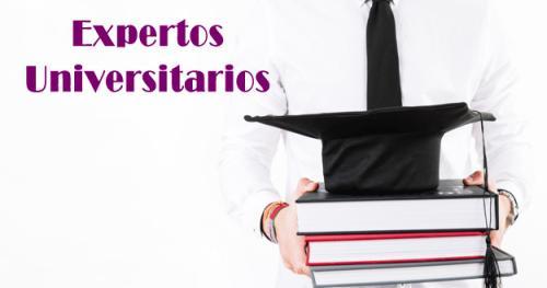Expertos Universitarios